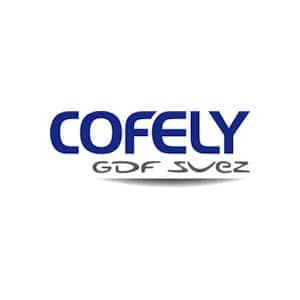 Die Cofely Deutschland GmbH hat die sächsische Ingenieurgesellschaft Haus-Technik mbh (IHT) erworben.