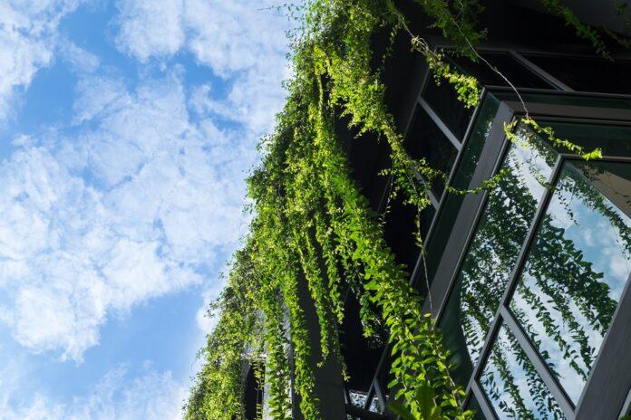 JLL und Westbridge kooperieren für mehr Nachhaltigkeit. Bild: korkeng/stock.adobe.com